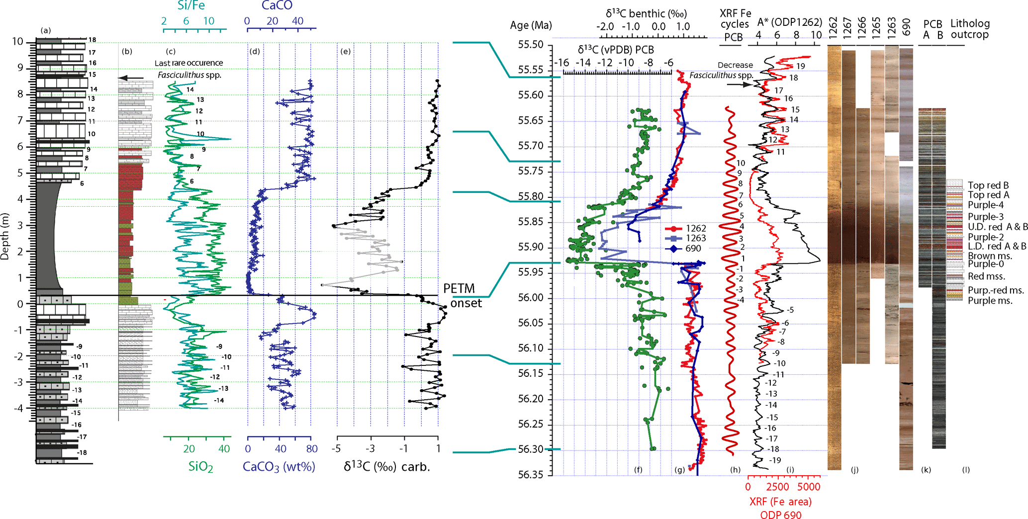 CP - Dynamics of sediment flux to a bathyal continental