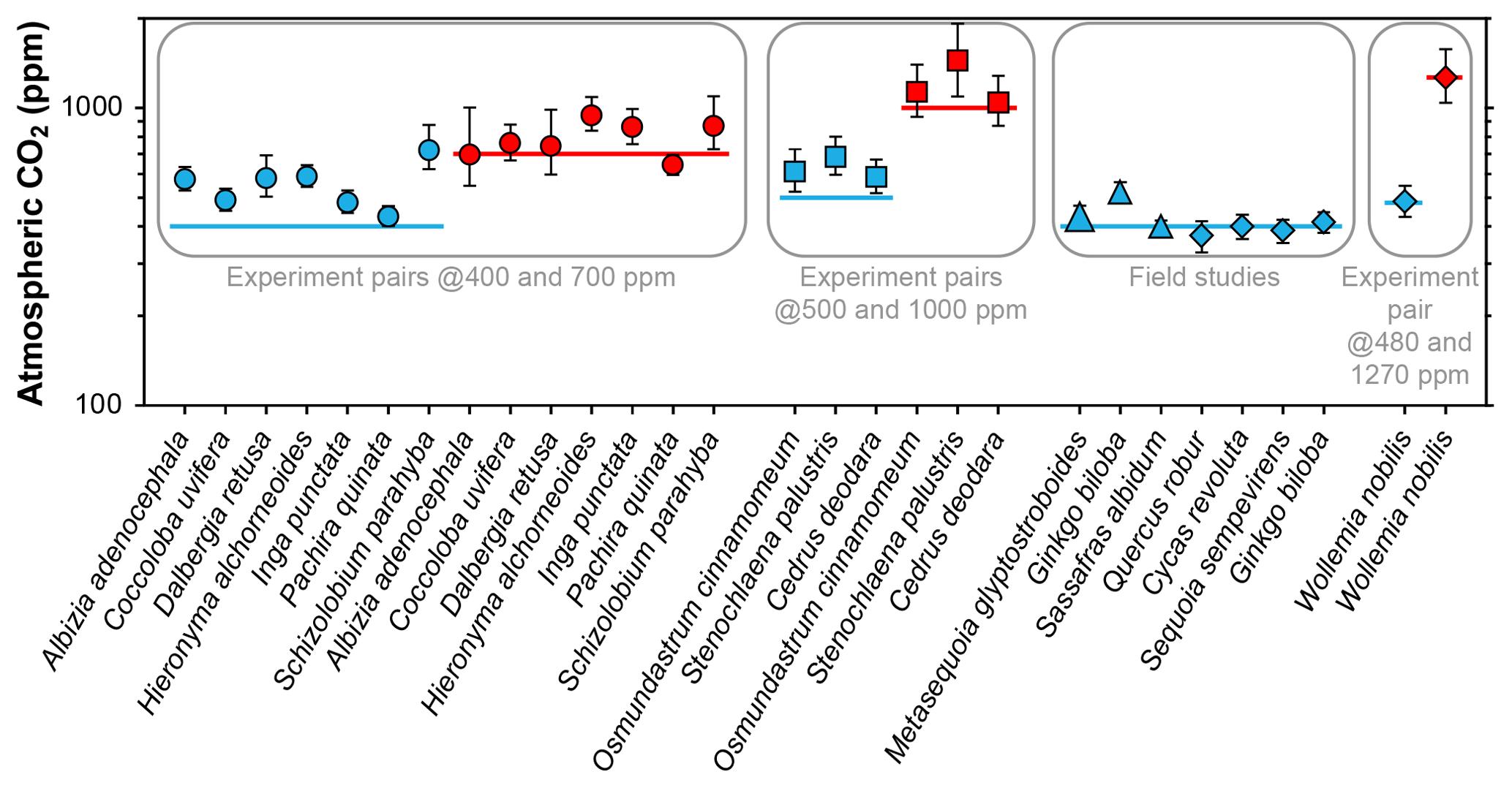 CP - Sensitivity of a leaf gas-exchange model for estimating